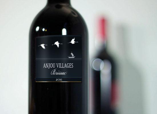 bouteilles-vin