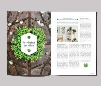 Mise en page magazine